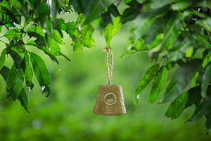 coir-pot_open Bird Feeder
