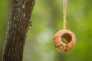 tube-cocos-open Bird Feeder